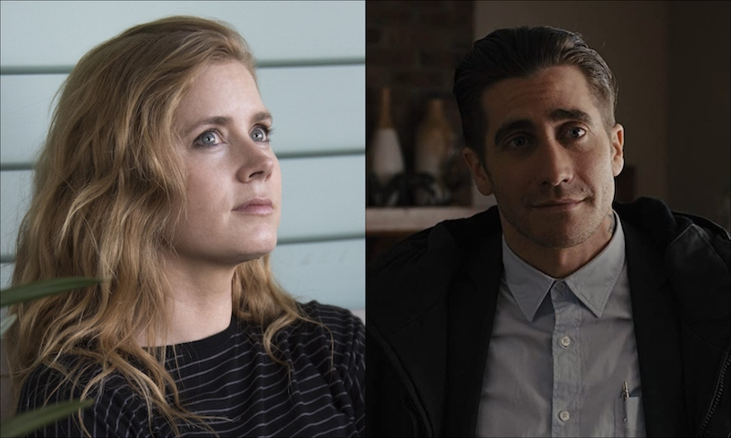 Amy Adams and Jake Gyllenhaal will Аdapt Susan Simard's Finding the Mother Tree